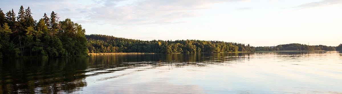 Bild på vattnet nära Mälargården